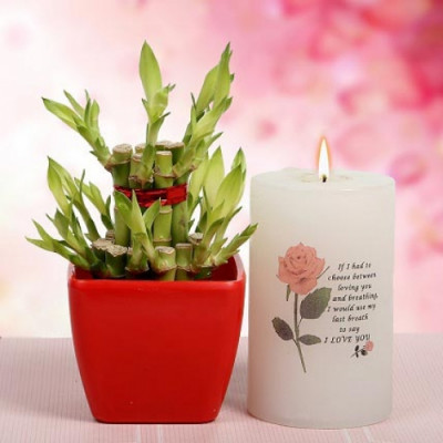Lucky Bamboo and Big Candle