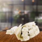 12 White Carnations