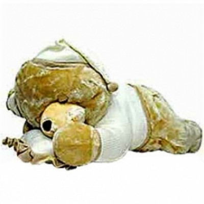 Play & Pets Sleeping Bear with Pillow