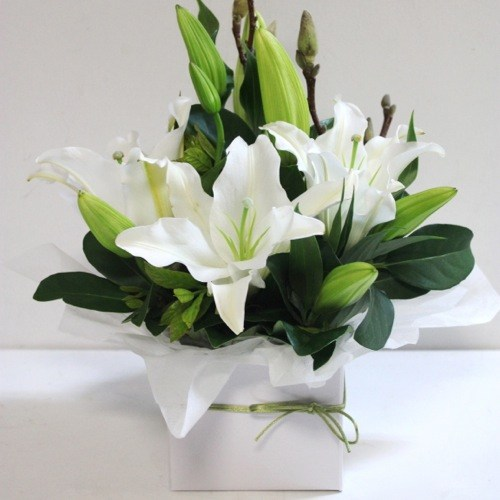 What Does The White Lily Flower Represent Flowers Healthy